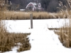 2018-02-10 Järnavik-Bräkne-Hoby 4298849