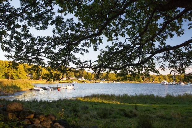 2016-09-06 Järnavik - Natur