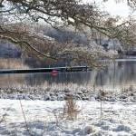 2017-02-24 Järnavik - Vintermorgon
